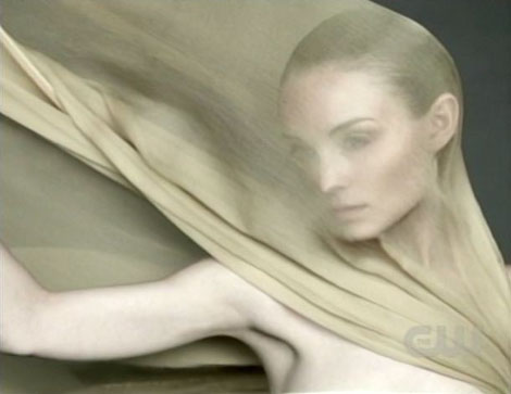 Antm13_5_brittany_pic