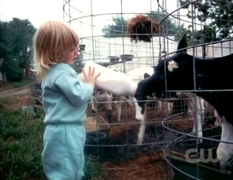 Antm13_12_laura_milk