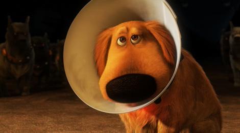 Up_pixar_dog