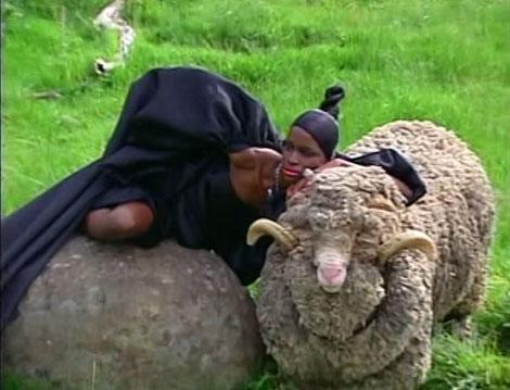 Antm14_8_sheep6