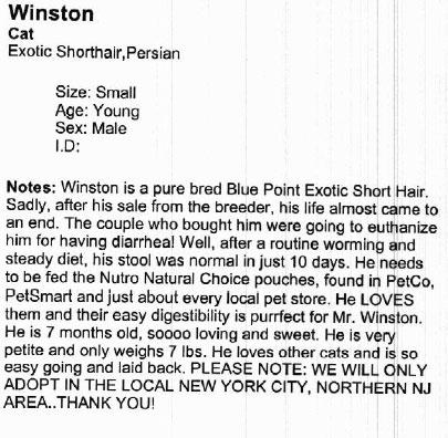 Winstonscan