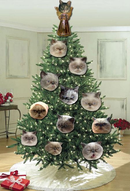 Catchristmascard2