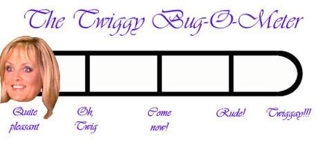 E5_bugometer