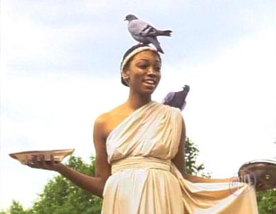 Pigeons_bre