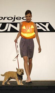 S3e3_design_bradley_pumpkin