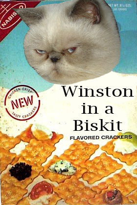 Winstonbizkit